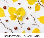 closeup of set of autumn yellow ... | Shutterstock . vector #666416686