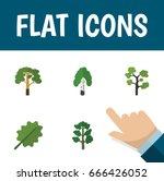flat icon natural set of alder  ... | Shutterstock .eps vector #666426052
