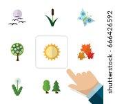 flat icon bio set of tree ... | Shutterstock .eps vector #666426592