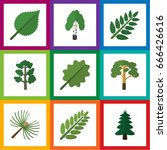 flat icon natural set of park ... | Shutterstock .eps vector #666426616