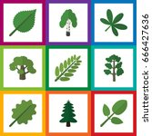 flat icon nature set of foliage ... | Shutterstock .eps vector #666427636