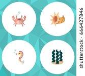 flat icon nature set of alga ... | Shutterstock .eps vector #666427846