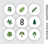 flat icon nature set of wood ... | Shutterstock .eps vector #666433066