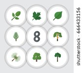 flat icon nature set of wood ... | Shutterstock .eps vector #666433156