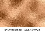gold bronze  golden rose or... | Shutterstock .eps vector #666489925