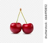 red cherry. two ripe berries... | Shutterstock .eps vector #666490852