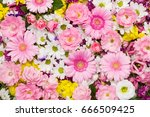 Roses  Gerbera And Other...