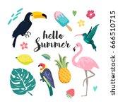 Summer Design Elements. Set...