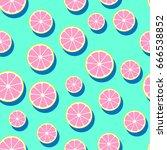 round grapefruit slices ... | Shutterstock . vector #666538852