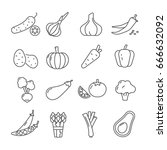 set of vegetables related... | Shutterstock .eps vector #666632092