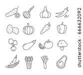 set of vegetables related... | Shutterstock .eps vector #666632092
