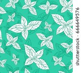 mint leaf peppermint isolated...   Shutterstock .eps vector #666649576