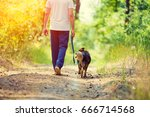 man walking with a dog on dirt... | Shutterstock . vector #666714568