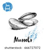 hand drawn sketch style boiled... | Shutterstock .eps vector #666727072