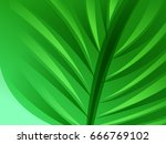abstract green leave background ... | Shutterstock .eps vector #666769102