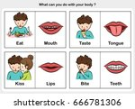 body function eat  taste  kiss  ... | Shutterstock .eps vector #666781306