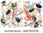 sea food composition  flat lay... | Shutterstock . vector #666785296