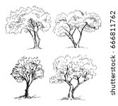 tree sketches set. vector... | Shutterstock .eps vector #666811762