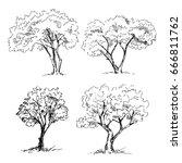 tree sketches set. vector... | Shutterstock .eps vector #666811762