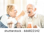 happy retired senior couple in... | Shutterstock . vector #666822142