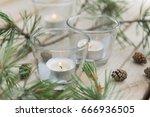 pine branch  fir cones  burning ... | Shutterstock . vector #666936505