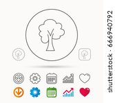 maple tree icon. forest wood... | Shutterstock .eps vector #666940792