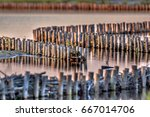 ecological bank protection of... | Shutterstock . vector #667014706