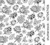 vector seamless retro pattern... | Shutterstock .eps vector #667047436