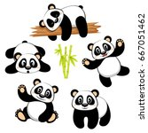 cute panda bear with different... | Shutterstock .eps vector #667051462