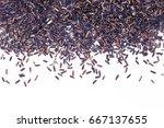 food background  black jasmine...   Shutterstock . vector #667137655