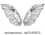wings. vector illustration on... | Shutterstock .eps vector #667192072