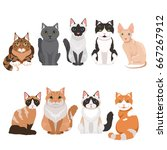 domestic cats in cartoon style. ... | Shutterstock .eps vector #667267912