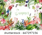 beautiful bright colorful... | Shutterstock . vector #667297156