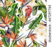 beautiful watercolor seamless... | Shutterstock . vector #667297765