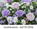 roses | Shutterstock . vector #667371946