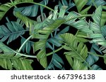 tropical palm leaves. vector... | Shutterstock .eps vector #667396138