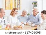 group of happy older people on... | Shutterstock . vector #667406095