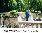 wonderful wedding couple on the ... | Shutterstock . vector #667423966