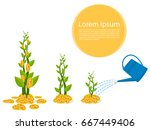 plant tree growth from money... | Shutterstock .eps vector #667449406