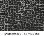distressed overlay texture of... | Shutterstock .eps vector #667489456