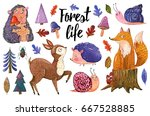 Stock photo watercolor set of forest animals and plants in a cartoon style hand drawn illustration isolated on 667528885