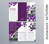 brochure design  brochure... | Shutterstock .eps vector #667529086
