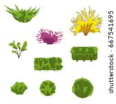 green herbal plant isolated on...