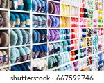 variegated  bright and colorful ... | Shutterstock . vector #667592746