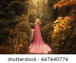 the elf walks in the autumn...   Shutterstock . vector #667640776