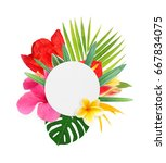 tropical flowers on a white... | Shutterstock . vector #667834075