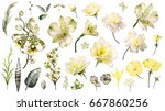 Stock photo yellow tropical collection with plants elements leaf flowers botanical illustration isolated on 667860256