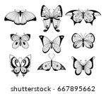 set of different butterflies... | Shutterstock .eps vector #667895662