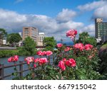 rose blooming riverside garden | Shutterstock . vector #667915042