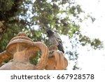 Amphora At Serapide Square In...